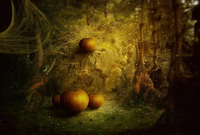 halloween-213716_960_720