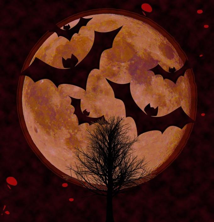 halloween-1679591_960_720