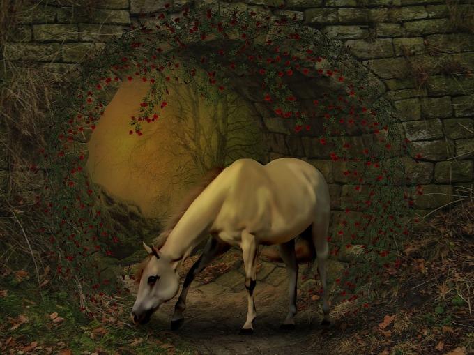 horse-1569148_960_720