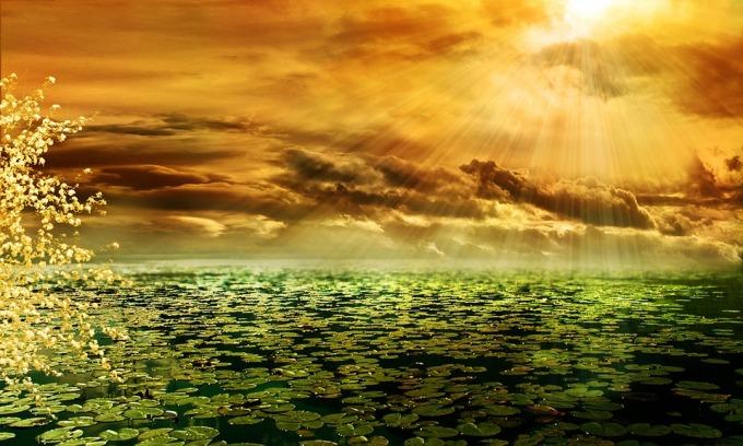 sunbeam-292987_960_720
