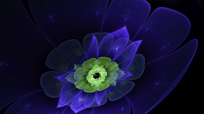 fractal-2056106_960_720