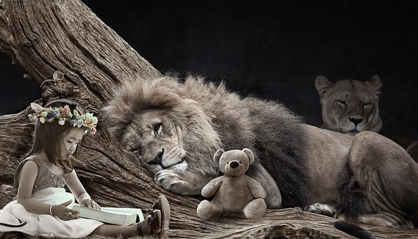 lions with little girl/teddy bear