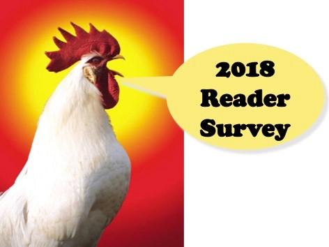 2018 survey