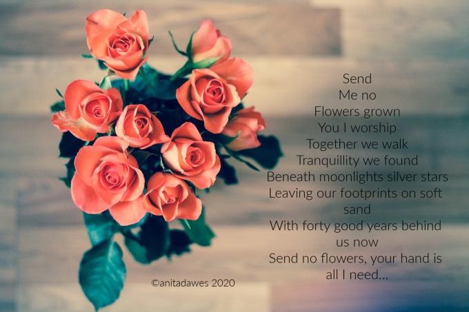 roses-690085_1920(1).jpg